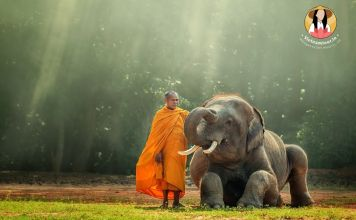 cambodia tours from india 9