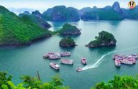 vietnam business tours