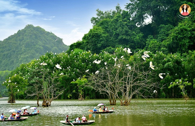 Things to do in ninh binh 19