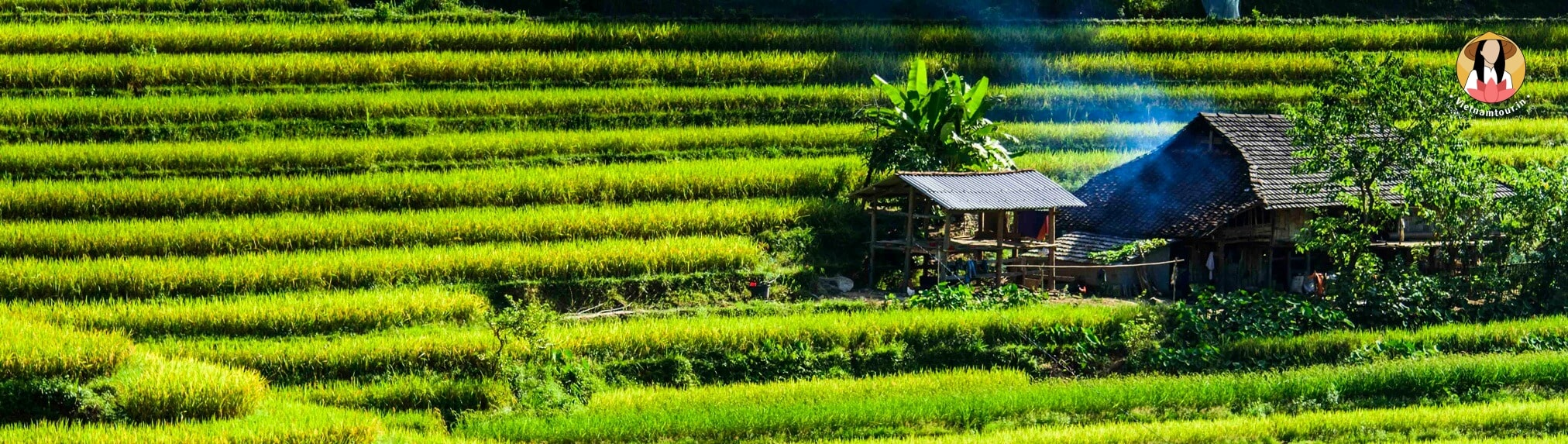 Best seller Vietnam tours from India