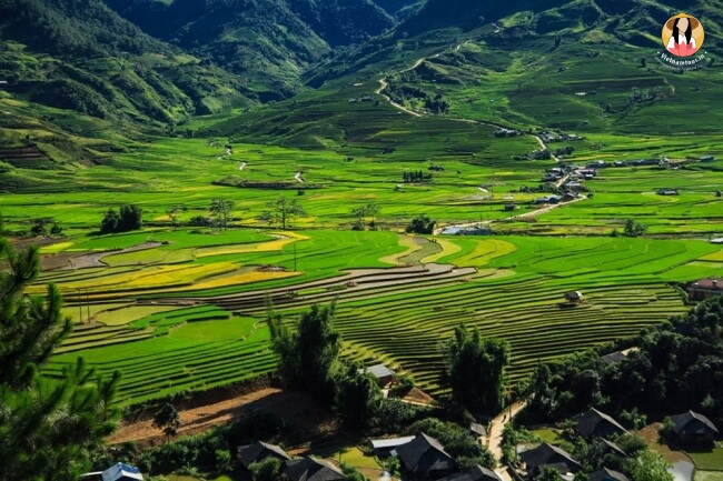 Sapa Travel Guide 10