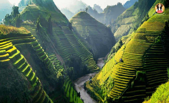 Vietnam Mountains 1