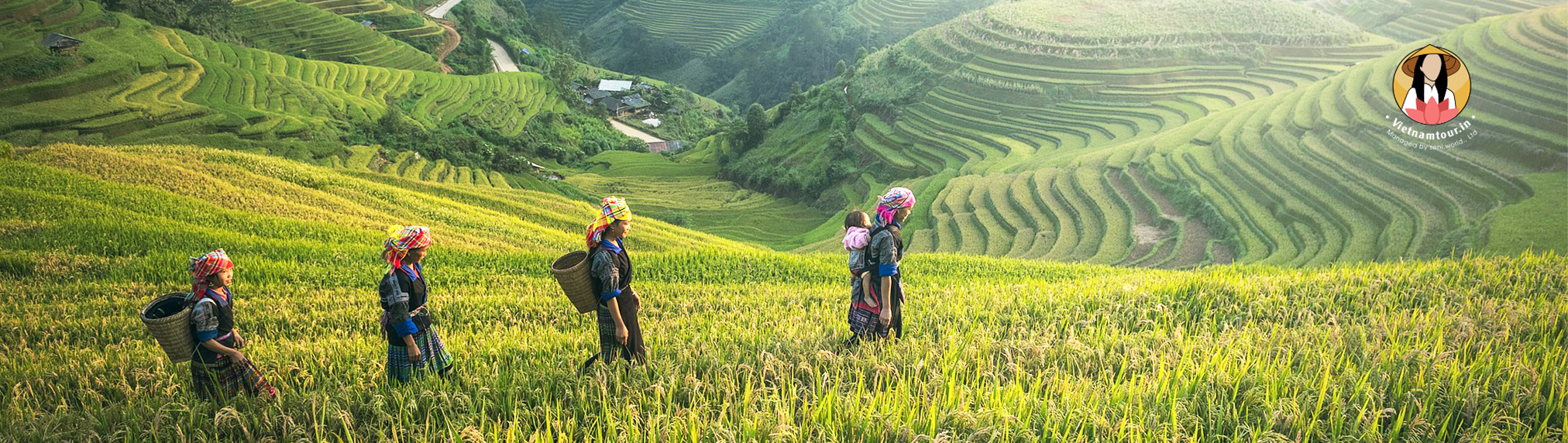 vietnam tour packages from hyderabad